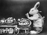 Easter Bunny and Eggs Photographic Print