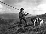 Russian Shepherd Photographic Print