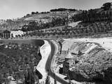 Mount of Olives Photographic Print