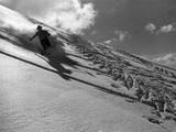 Runaway Skier Fotografiskt tryck