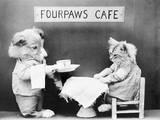 Fourpaws Cafe Photographic Print
