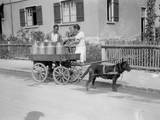 Black Forest Milk Cart Photographic Print