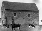 Saxon Chapel Photographic Print