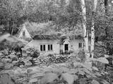 Norwegian House Photographic Print