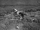 Johnson's Plane Crash Photographic Print