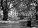 Berkeley Square Photographic Print