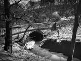 Dibbinsdale Bridge Photographic Print