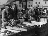 Bergen Fish Market Photographic Print