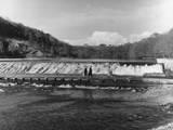 Lopwell Dam Photographic Print