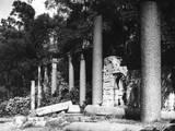 Virginia Waters Temple Fotografisk tryk