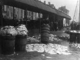 Brixham Fish Market Photographic Print