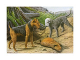 Airdale Terrier and Bedlington Terrier Giclee Print