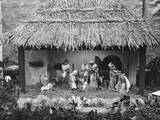 Nativity Crib Photographic Print