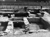 Verulamium Excavations Photographic Print