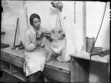 Poodle Parlour 1930s Photographic Print