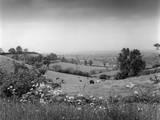 Warwickshire Scenery Photographic Print