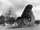 Hilborough Chapel Ruins Photographic Print