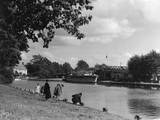 Banks of the River Yare Photographic Print