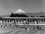 New Zealand School Photographic Print