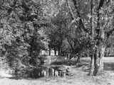 The Roding at Wanstead Photographic Print
