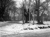 Havering in the Snow Photographic Print