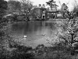 Springtime Pond Photographic Print