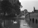 England, St. Albans Photographic Print