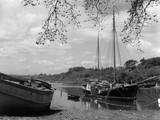 England, River Dart Photographic Print