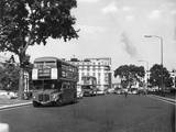 Three Buses at Once! Photographic Print
