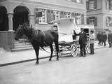 German Milk Horse and Cart Photographic Print