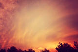 A Beautiful Sunset over Treetops Toned with a Retro Vintage Instagram Filter Poster by  graphicphoto