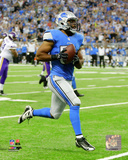 DeAndre Levy 2013 Action Photo