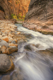 Scene Within the Virgin Narrows Zion National Park Photographic Print by Vincent James