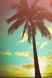 Retro Styled Hawaiian Palm Tree Photographic Print by Mr Doomits