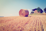 Hay Bales Photographic Print by  gkuna