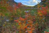 Autumn Color at The Tarn Maine Coast Photographic Print by Vincent James