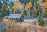 Old Cabin in Autumn Woods Hope Valley California Photographic Print by Vincent James