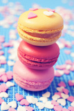 Some Appetizing Macarons of Different Flavors Photographic Print by  nito
