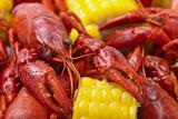 Crayfish Boil Fotografisk tryk af -=Viktor=-