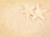 Closeup of a Starfish on the Sand of a Beach, with a Retro Effect Photographic Print by  melking