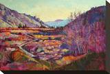 Sierra Shadow Stretched Canvas Print by Erin Hanson
