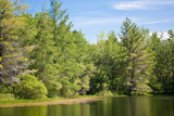 New England Pond Photo Print Poster Print