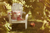Adirondack Chair and Book on a Summer Day Photographic Print by  soupstock