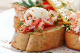 Crab Meat with Toast, Sauce and Fresh Herbs, Close-Up Photographic Print by  Kondor83