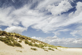 Empty Beach and Dunes with Big Cloudy Sky Photographic Print by Daniel Halpin Photography