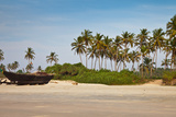 Coconut Trees Photographic Print by Amit Basu Photography
