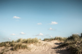 Grassy Sand Dunes under Blue Sky Photographic Print by Dan Brownsword