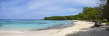 The Picturesque Setting of Winnifred Beach Photographic Print by Doug Pearson