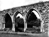 Beaulieu Abbey Photographic Print by Fred Musto