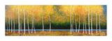 Grove Panorama Wydruk giclee autor Melissa Graves-Brown